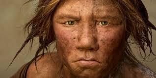 Stammen wij af van de 'homo mocro'?